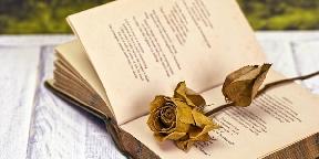 A kortárs költészet nyomában