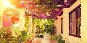Gyógyító kertek