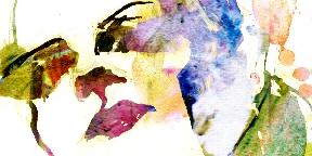 Fény-szőtt-test
